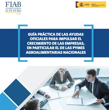 Guia-practica-de-las-ayudas-oficiales-para-impulsar-el-crecimiento-de-las-empresas